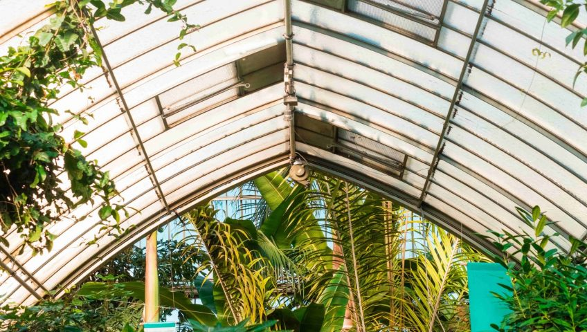 photo of a conservatory roof made of glass